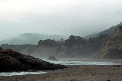 we called it Whale Beach.