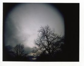 Holga + Polaroid back = fun times.