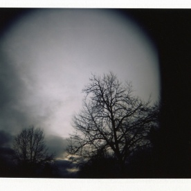 Holga + Polaroid back = fun times.