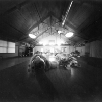 Roll 12 - my foray into large format pinhole photography