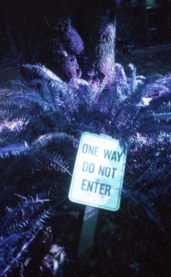 One way do not enter