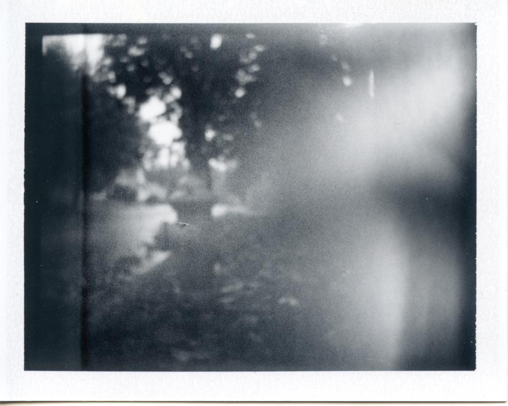 photo012