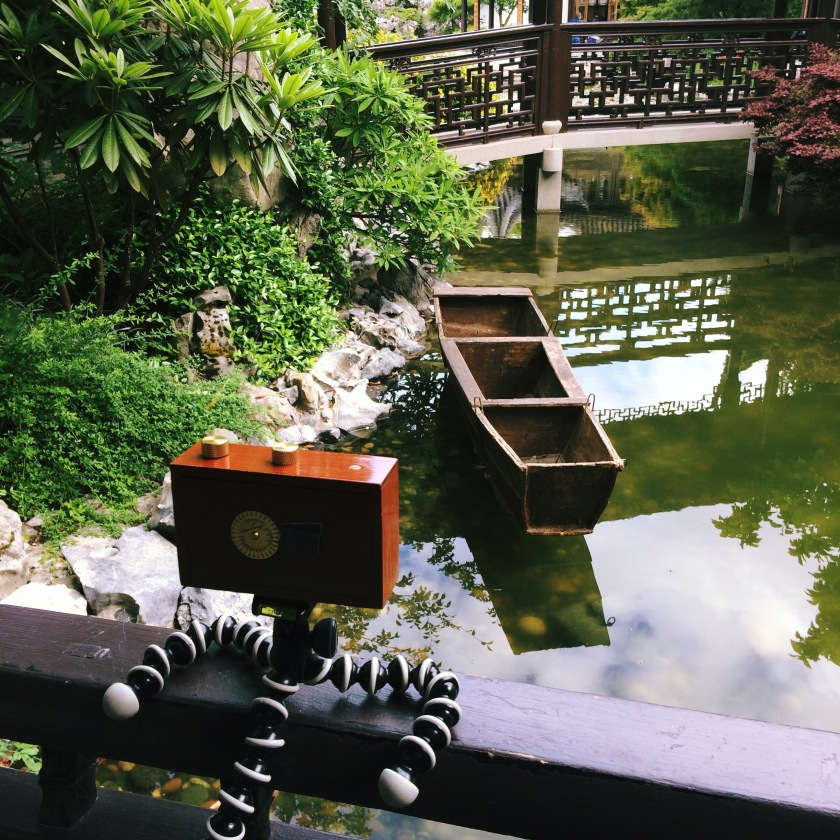 even my pinhole camera feels chill here