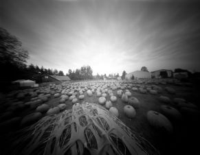 "In October I started my ""One Pinhole A Day"" Project"