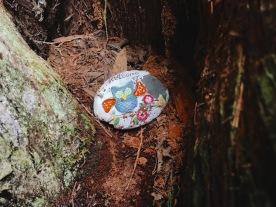 3/26: Hidden treasures in the forest
