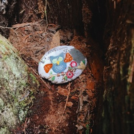 3/26: Hidden treasures in the forest