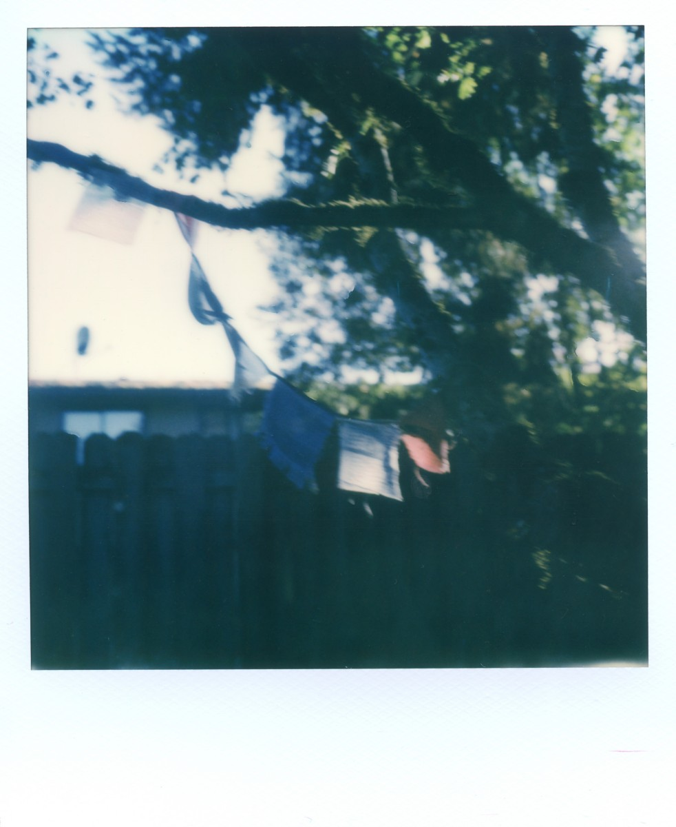 Polaroid Week, Part 2